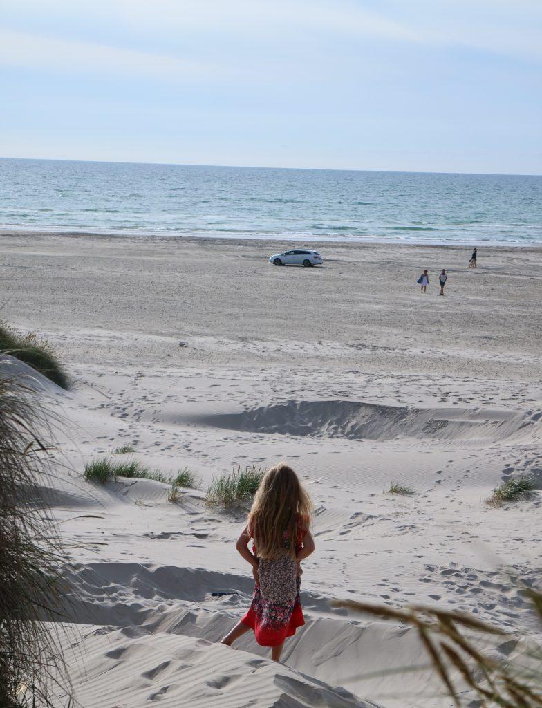 Kullakeks - Dänemark - Nordjütland - Saltum Strand