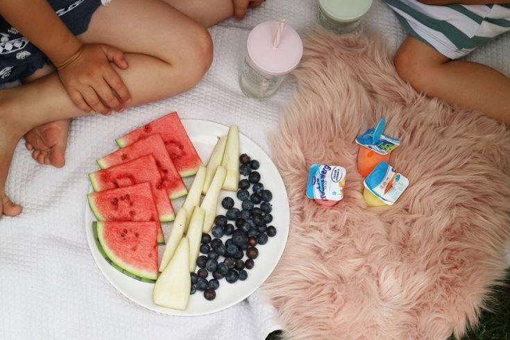 Kullakeks - FruchtZwerge - Danone - Selbstmacheis - Snack - fruchtiger Snack