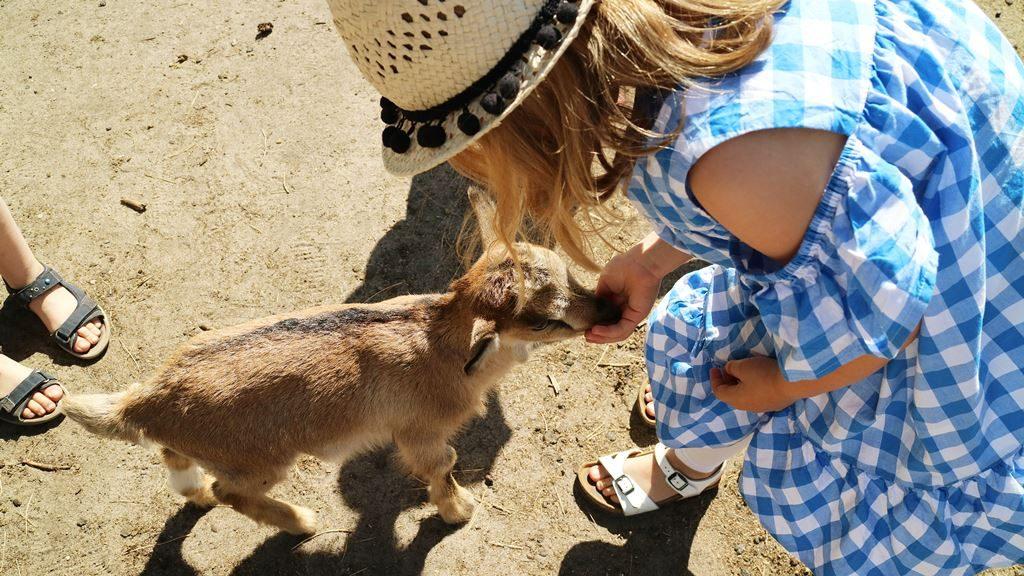 Kullakeks - Gedanken - Mama sein - Schulkind