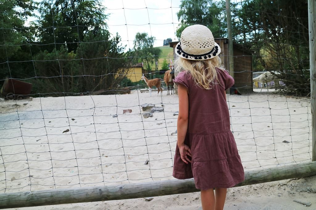 Kullakeks - Freizeitpark - Fort Fun Abenteuerland - Lamas