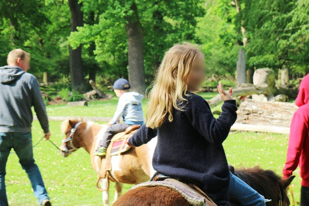 Kullakeks - Wisentgehege Springe - Rudeltage - Ponyreiten